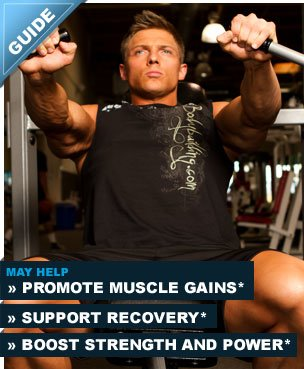 Main supplements for muscle building 101