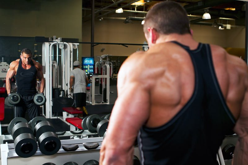 Fish oil benefits tip the scales in your favor with our for Fish oil bodybuilding