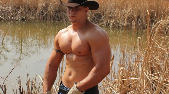 From cowBOY to cowMAN