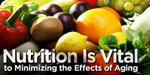 Nutrition Is Vital To Minimizing The Effects Of Aging!