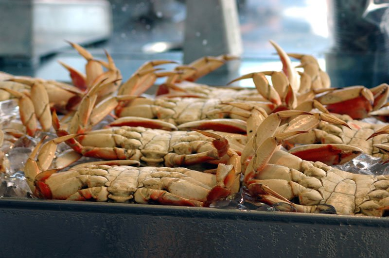 Are crustaceans as a protein source worth shelling out a little more money?