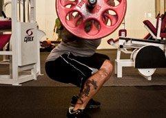 Whole-Body Training
