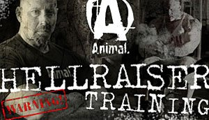 Video Series of the Year: Animal Hellraiser Trainer