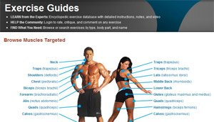 Exercise Guides: Over 675 Exercises!