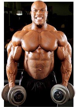 Principi di allenamento per body builder avanzati