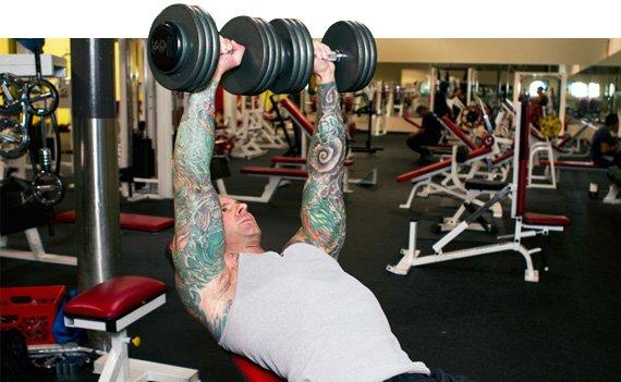 Le braccia muscolose non sono soltanto un simbolo di mascolinità, ma anche la parte più visibile del corpo.