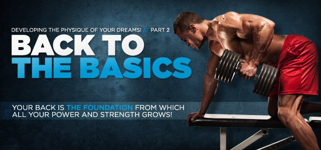 A Five-Part Series Of Developing The Physique Of Your Dreams!