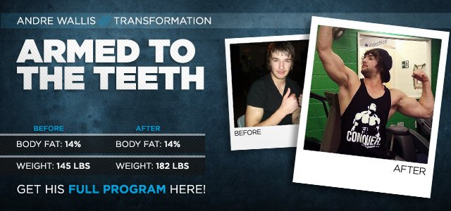 Body Transformation: Armed To The Teeth