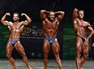 2012 NPC Colorado State Championships Photos