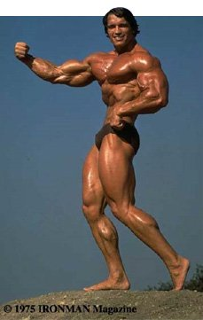 Fit Past 40: Superman Muscle & Bodybuilding Guide