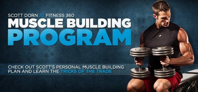 Scott Dorn Muscle Building Program