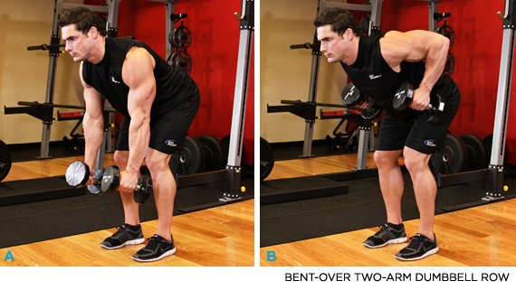 Bent Over DB Row