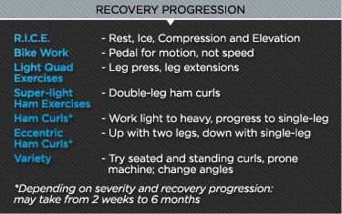 Anatomy Of An Injury Hamstring Pulls And Tears