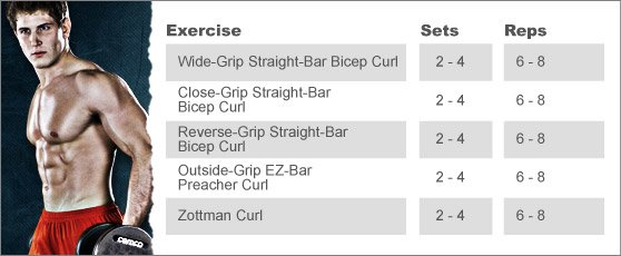 Week 3: SCOTT HERMAN'S BICEP BLASTER
