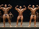 IFBB Masters Olympia