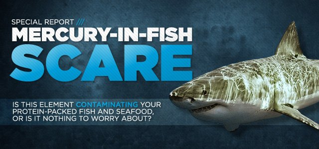 The Mercury In Fish Scare How Safe Is All That Seafood