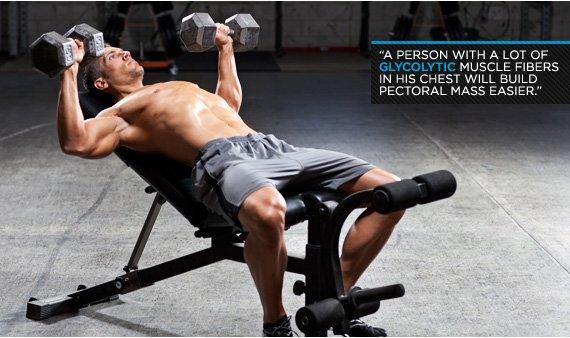 Power Chest Workout: Joe Palumbo's Pro Pec Training