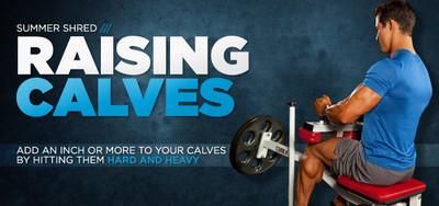 Raising Calves: Preston Noble's Training Plan For Freaky Lower Legs