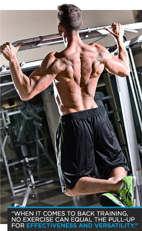 Rise Above The Rest With The Ultimate Pull Up Workout