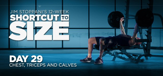 Shortcut To Size: Phase 2, Week 5, Day 29