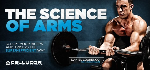 The Science Of Arm Training – Arm Workouts
