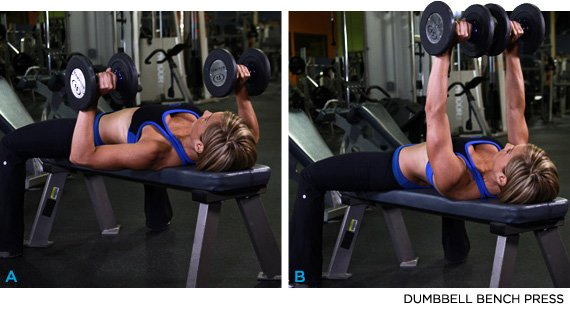 Exercise 7 Dumbbell Bench Press Rated 9 1
