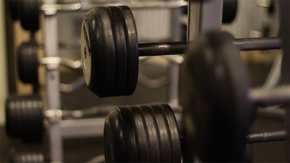 Picture The Bench, The Stacks Of Iron Plates, The Music, Voices Around You, And The Weights Clanging On The Racks