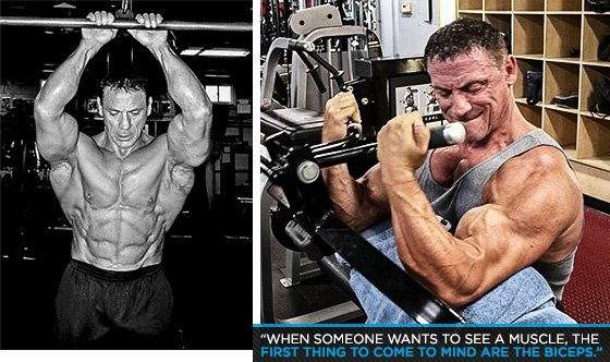 IFBB Pro Joe Palumbo's Recipe For Timeless Biceps And Back