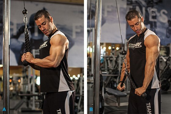 Arms By Alex: Strong Biceps And Triceps Workout ...