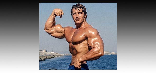 Arnold Schwarzenegger Pro Bodybuilding Profile