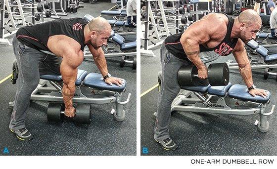 Work Your Back Twice Per Week