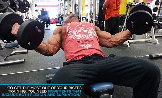 Get Big Arms: Noah Siegel's Sleeve-Busting Workout