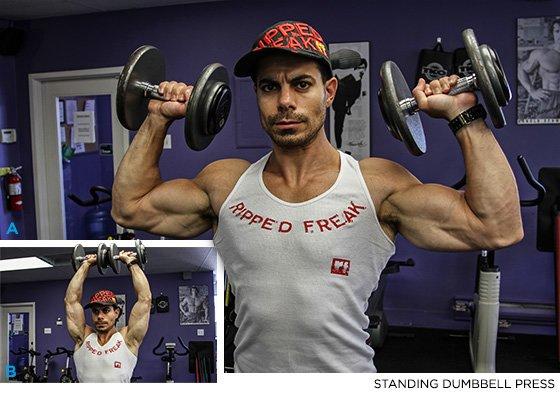 Anterior deltoid exercises dumbbells