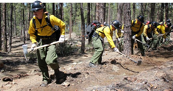 Unlike Fighting Structure Fires Where Brute Strength Is Paramount The Physical Demands Of Wildland Firefighting Are Vastly Diffe