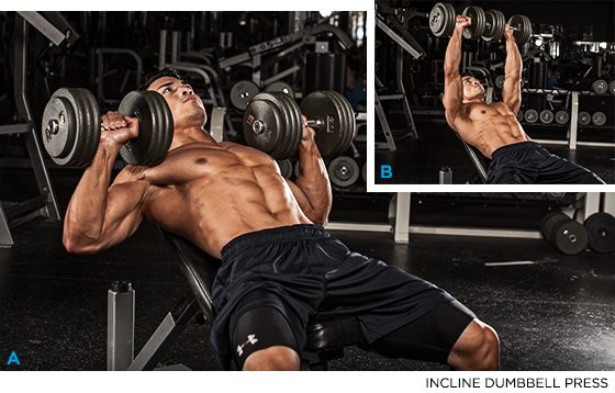Include dumbbell press