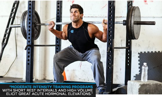 squats increase testosterone study
