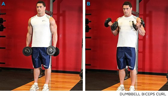 Dumbbell Biceps Curl