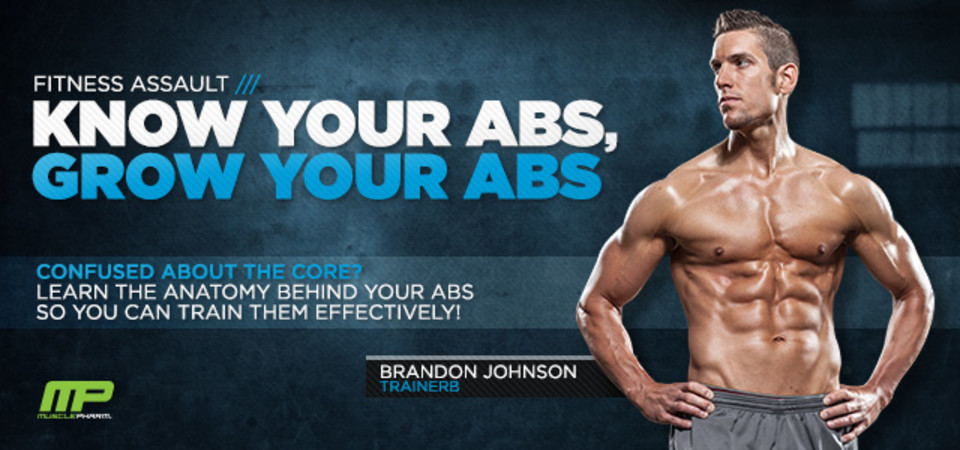 Fitness Assault Know Your Abs To Grow Your Abs