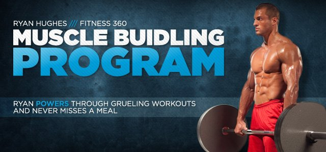 360 muscle program