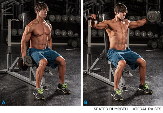 Seated Dumbbell Lateral Raises