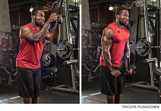 Triceps Pushdown