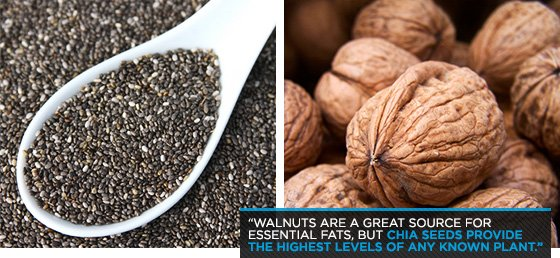 The Case For Chia