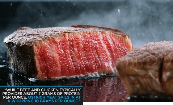 Beef will typically provide 7 grams of protein per ounce.