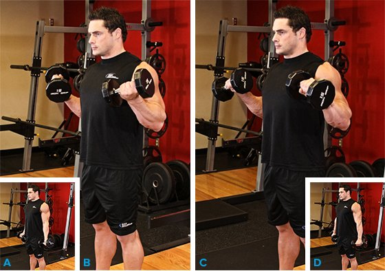 Your Top Ten Biceps Moves