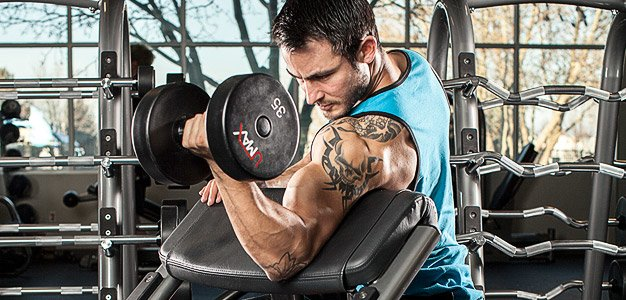 how to get shoulder muscle and abs