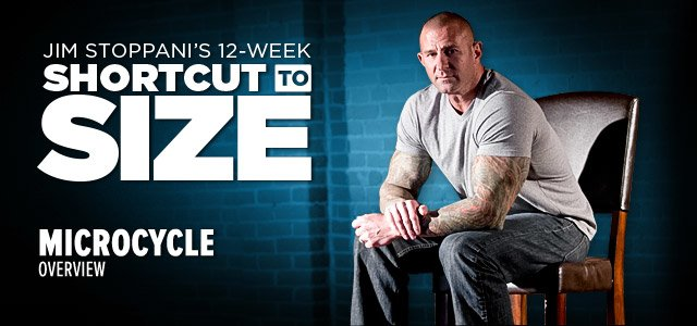 Jim Stoppani's 12-Week Shortcut To Size: Microcycles Explained
