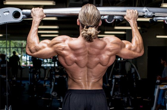 how to build muscle fast at home pdf
