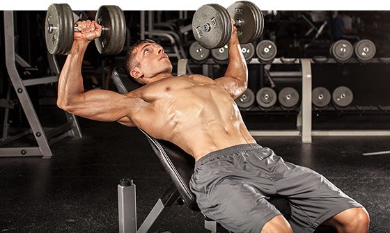 Every time you go into the gym and lift weights, you are placing an enormous amount of stress on the body.
