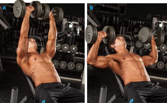 5 Big Bench Strategies Excerpted From Bench Press The