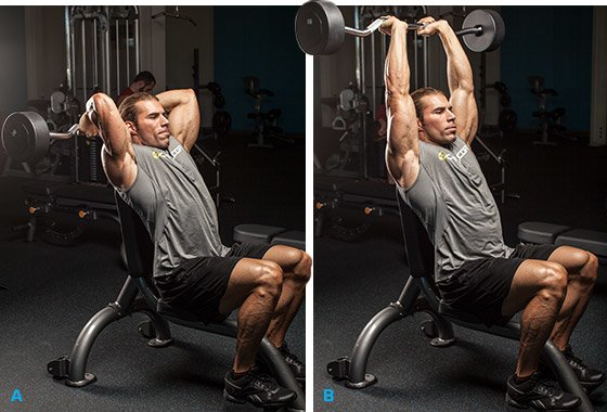 Admirable 7 Strategies To Target Your Triceps Long Head And Build Pabps2019 Chair Design Images Pabps2019Com